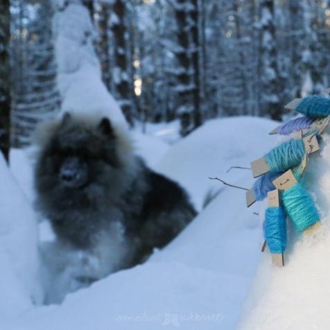 Neulehameen sinistä värikarttaa sekä taustavoima Hymy!