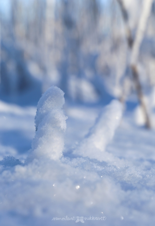 neulehame 4_kaislikko_talvi_samoilevat sukkaset