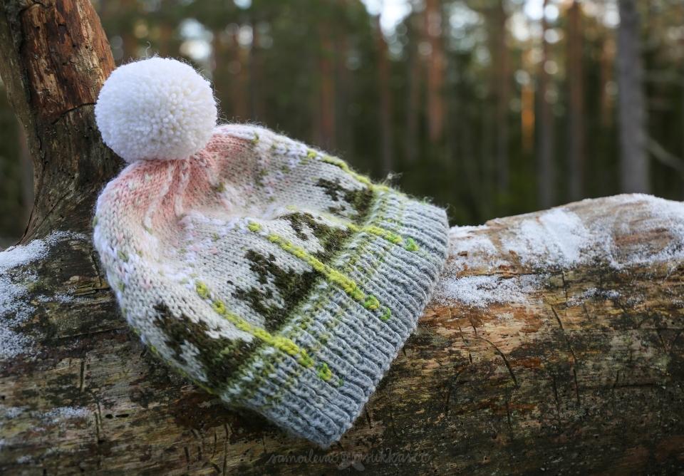 Talven tuntua pipo_samoilevatsukkaset_iristanttu_olarinterveysluontopolku