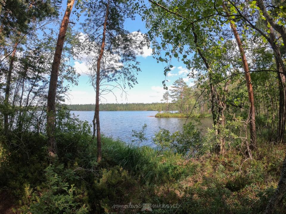 Nuuksio_samoilevatsukkaset_iristanttu_neuleretki_Orajärvi