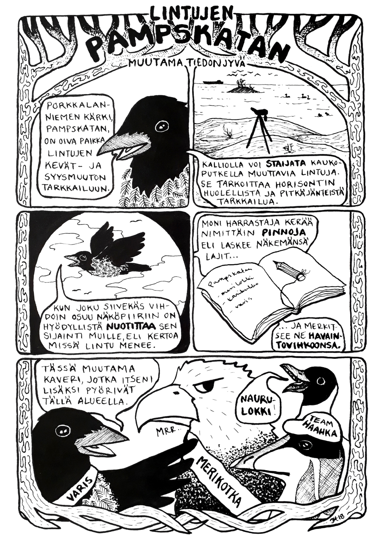 Infosarjis_Pampskatan linnut_iristanttu