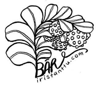 bärkorut_samoilevatsukkaset_iristanttu_logosuunnittelu
